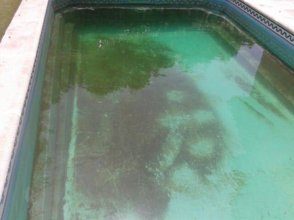 Agua verdosa